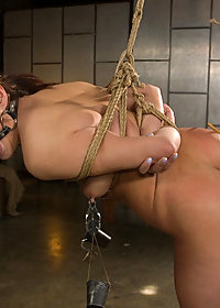 Kink Presents pic 5